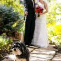 vail-wedding-sebastian-041