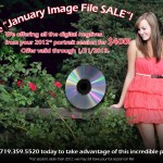 2012 portrait clients: Don't miss this incredible sale on your digital files!
