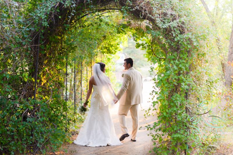 hillside-gardens-wedding-055