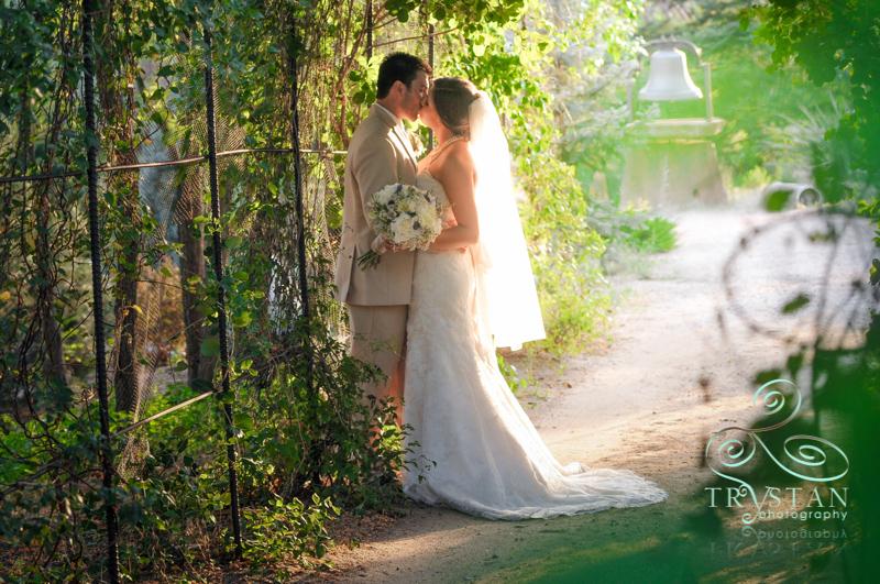 hillside-gardens-wedding-056